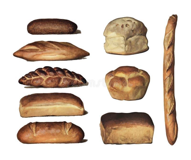 A enciclopédia 1911 do ` s do quitandeiro, uma coleção do vintage de vários tipos de nacos cozidos do pão Digital aumentada pelo  ilustração stock