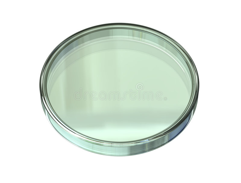 Download Enclosed Petri Dish empty stock illustration. Illustration of scientific - 4317469