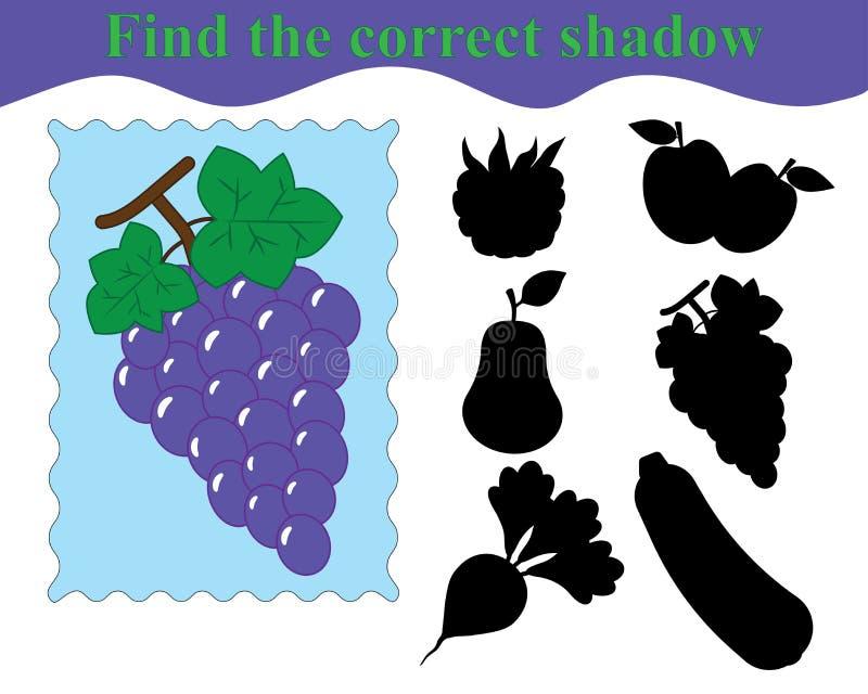 Encontre a sombra correta, jogo educacional para crianças ilustração royalty free