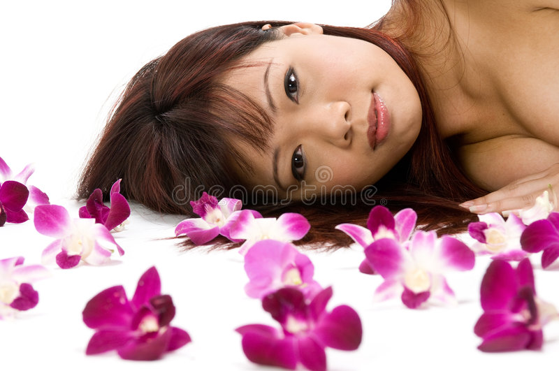 Encontro com orquídeas imagens de stock royalty free