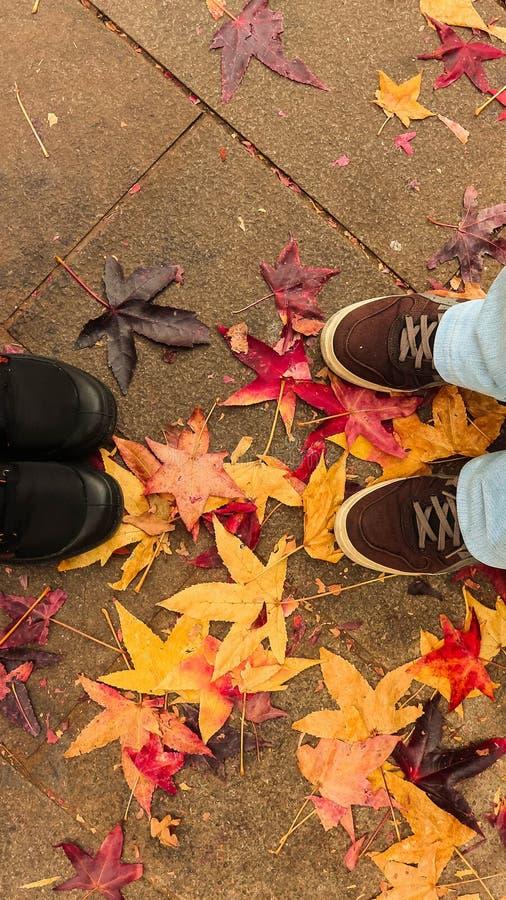 Encontro na estação do outono sobre uma terra colorida imagem de stock