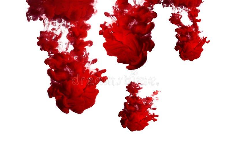 Encre rouge dans l'eau photographie stock libre de droits