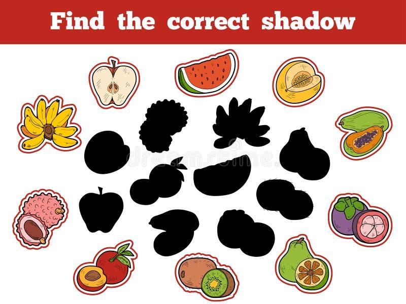 Encuentre la sombra correcta (las frutas) ilustración del vector