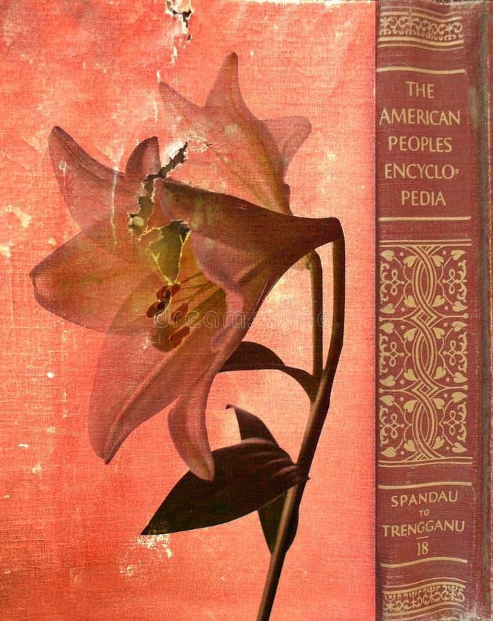 Encyclopedie vector illustratie