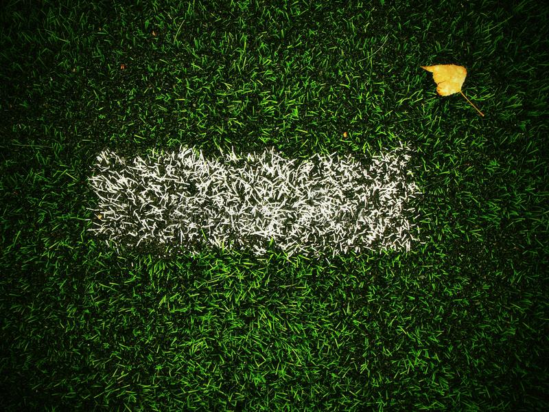 End of football season. Dry birch leaf fallen on ground of plastic green football turf with painted white line . Dramatic colors. End of football season. Dry stock photo