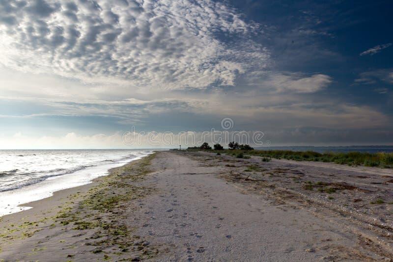 The end of the Kinburn spit, Mykolayiv region, Ukraine. Sea, sand, seagulls. Ukrainian native landscapes stock image