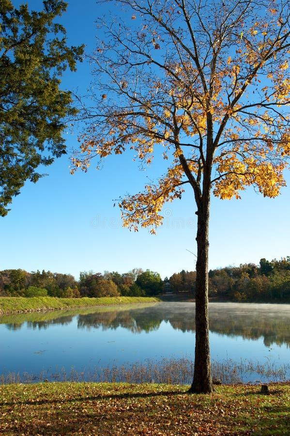 Ende des Herbstes stockfotos