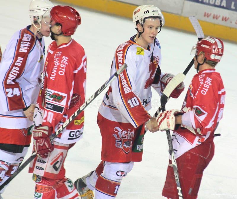 Ende des Spiels - Eishockeyabgleichung stockbilder