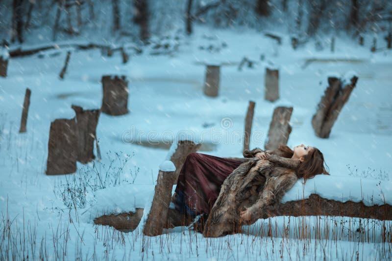 Endecha de la muchacha en un árbol y un helada en invierno imágenes de archivo libres de regalías