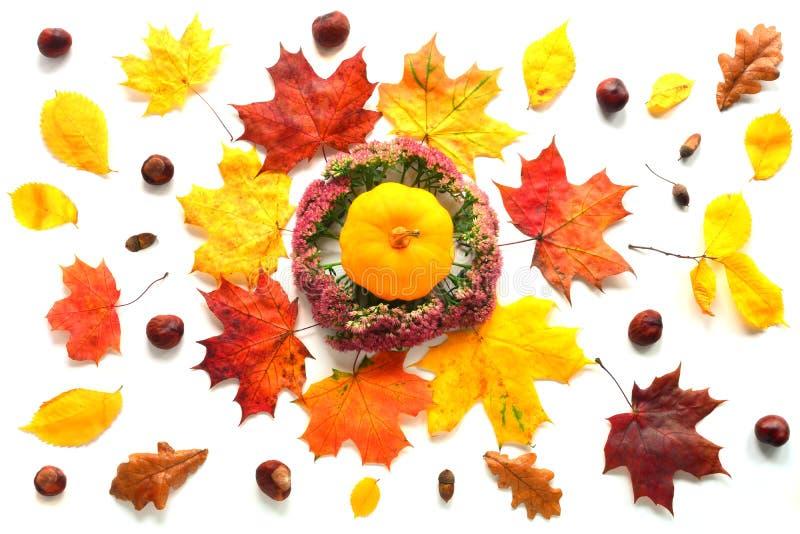 Endecha del plano del otoño fotos de archivo libres de regalías