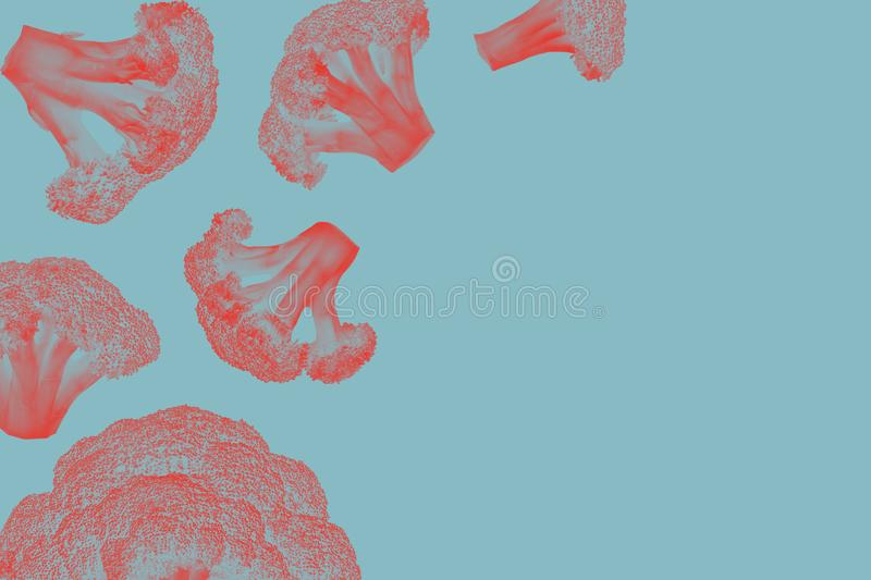 Endecha plana Concepto de la naturaleza Concepto sobrenatural Colores ultravioletas Diseñe para los folletos, carteles, cubiertas imagen de archivo