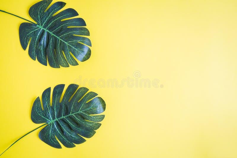 Endecha plana de hojas de palma contra fondo amarillo Concepto mínimo del verano de la naturaleza imagen de archivo