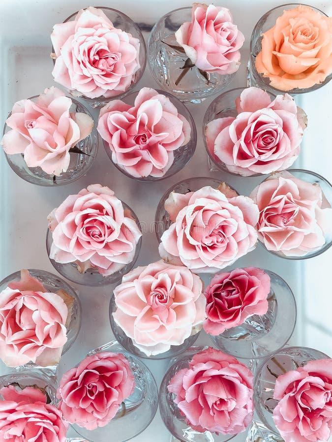 Endecha plana de las rosas dulces del color en vaso de agua Foco selectivo fotografía de archivo