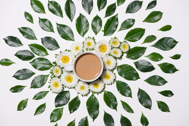 Endecha plana del modelo de las hojas y de flores del verde con la taza de café libre illustration