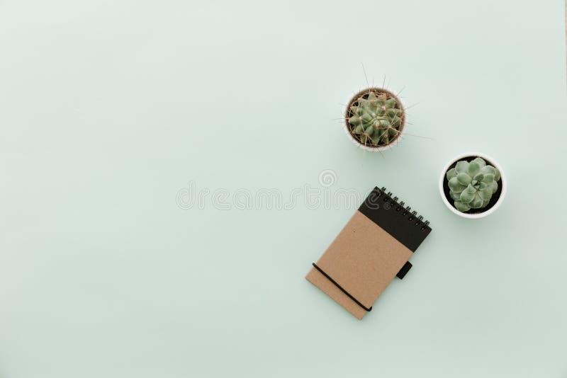 Endecha plana en colores pastel neutral con el cactus y la libreta fotografía de archivo