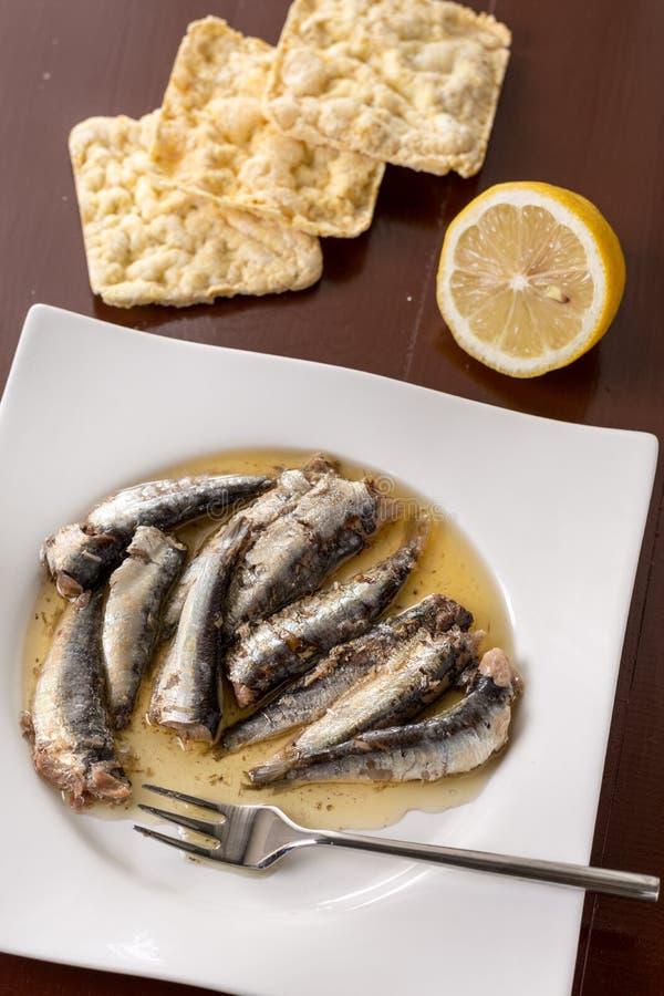 Endecha plana sobre las sardinas adobadas en el aceite con pan del limón y de maíz fotografía de archivo libre de regalías