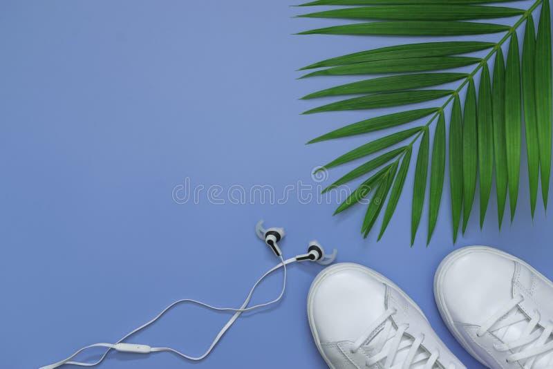 Endecha plana, visión superior con la palma tropical de los zapatos, del auricular y de la hoja verde para el concepto del viaje, fotos de archivo