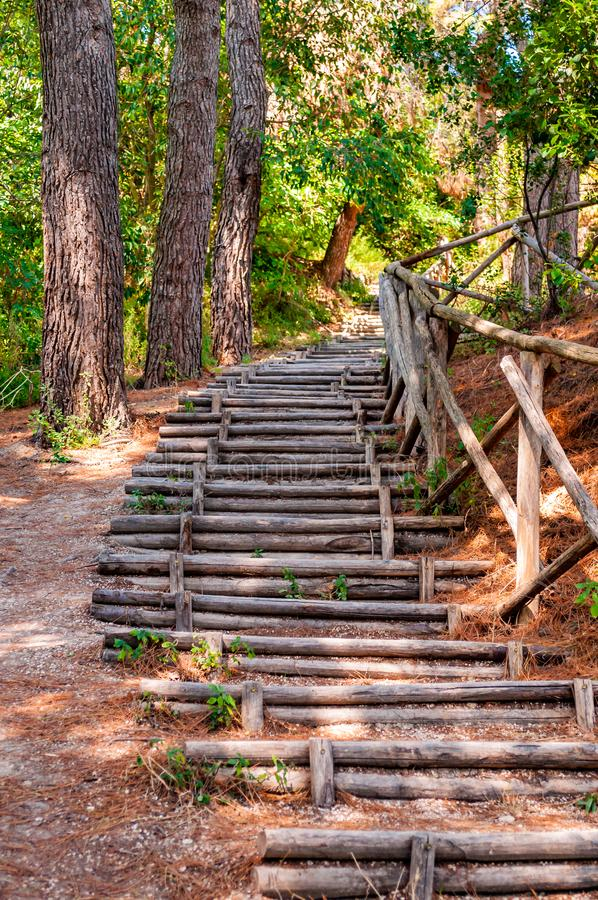 Endless curved wooden logs steps with crossed logs railings in the forest of Numana surroundings in Italy stock photos