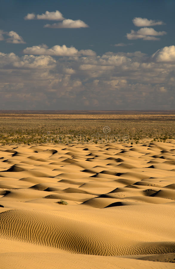 Endless desert... Dunes of the Sahara, sand desert stock photo