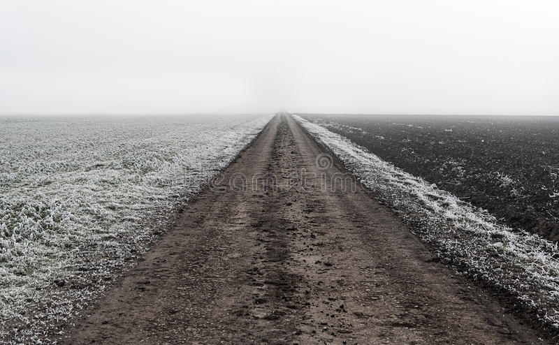Endless dirt road in the nature royalty free stock image