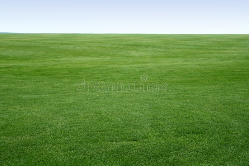 Endless lawn stock photography