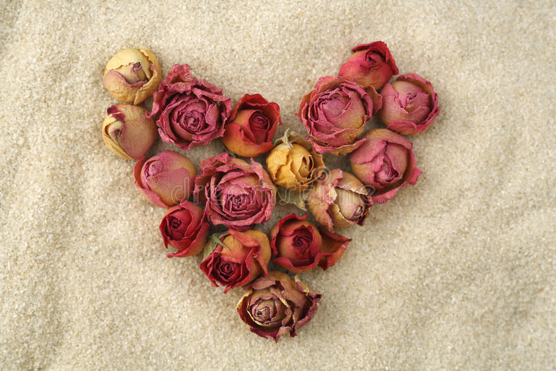 Endless love. Heart of red roses on the sand. Heart of red roses on the sand stock photos