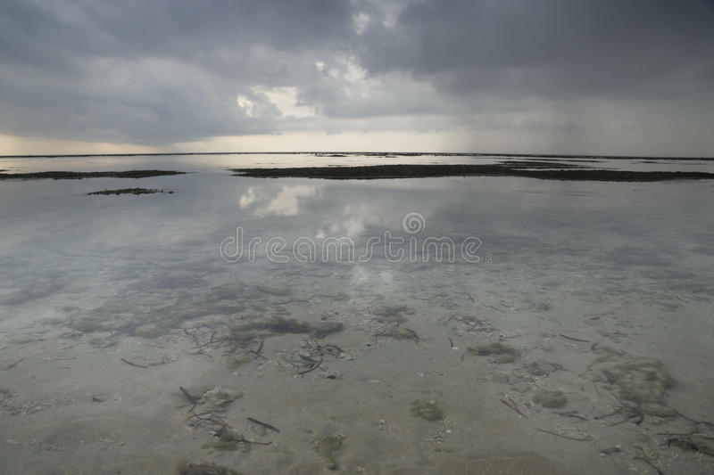 Endless ocean with view to the bottom of the sea at Gili Air, Lombok, Indonesia. Endless ocean with view to the bottom of the sea with stones and seagrass at stock photography