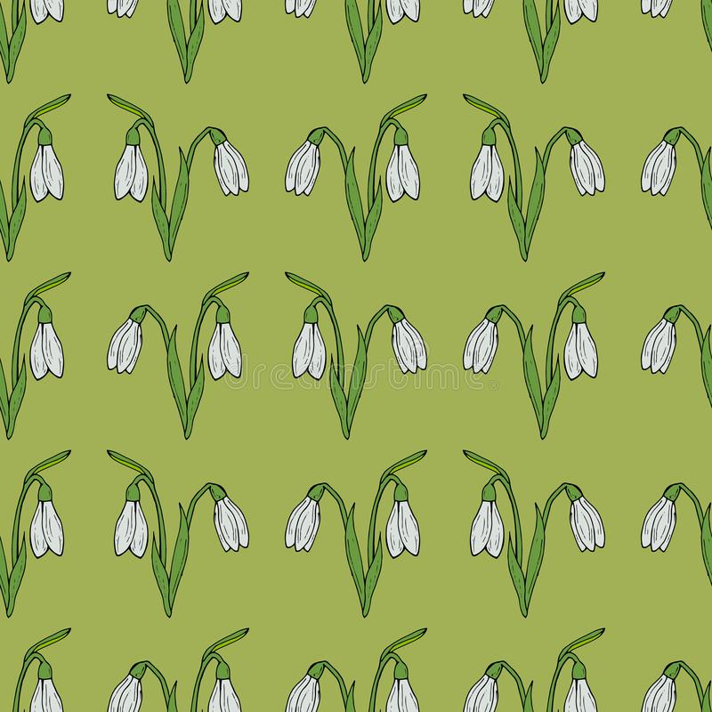 Seamless background of vector snowdrops on green background. royalty free illustration