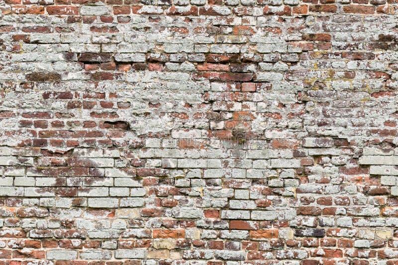 Endless seamless pattern of old brick wall stock image