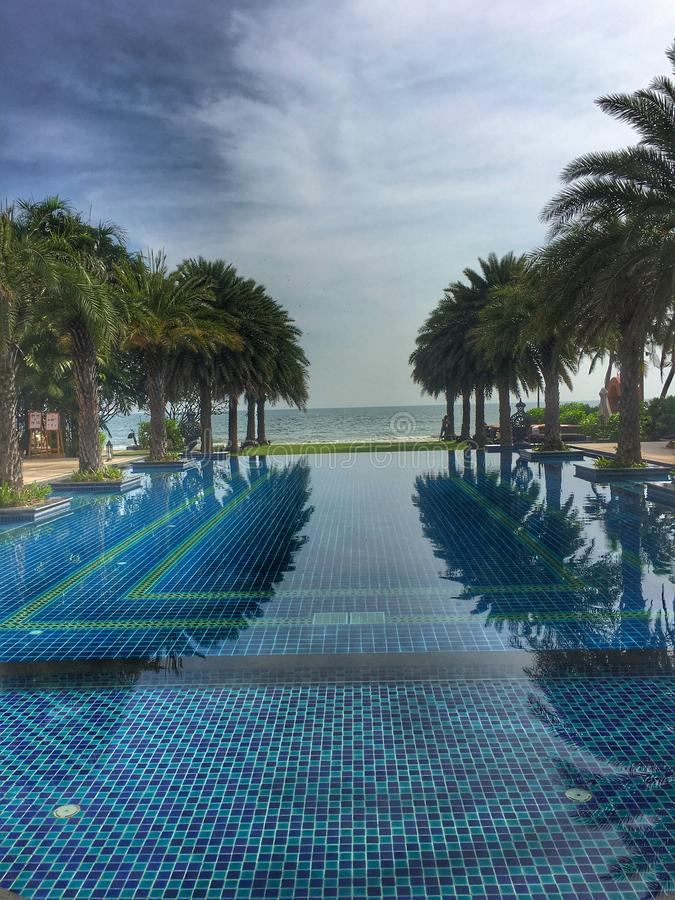 Endless swimming pool with palm trees royalty free stock image