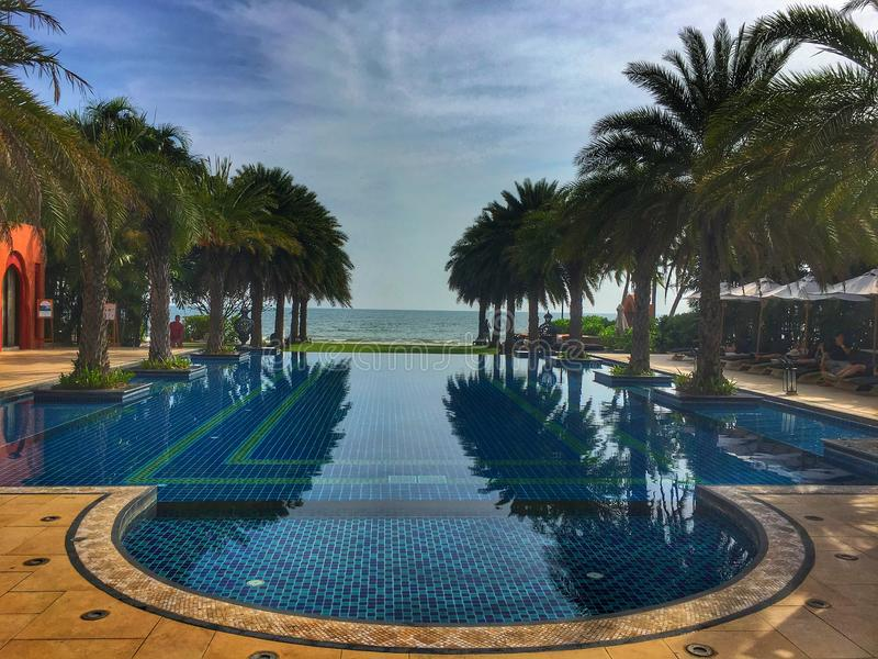 Endless swimming pool with palm trees stock photo