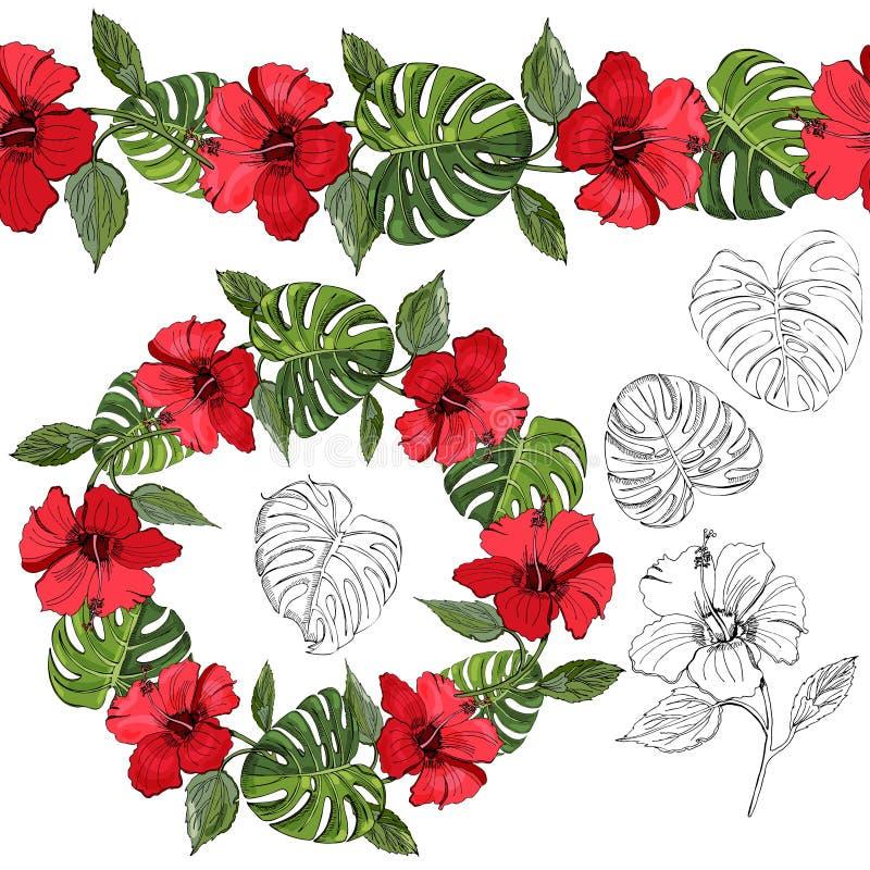 Endlose Bürste und Kranz der Handgezogenen und farbigen Skizze der Hibiscusblumen und der monstera Blätter vektor abbildung