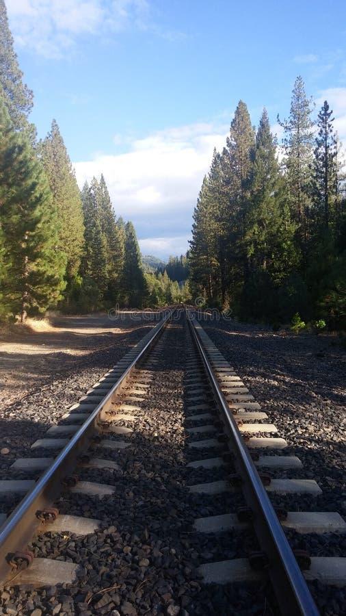 Endlose Bahngleise stockbild