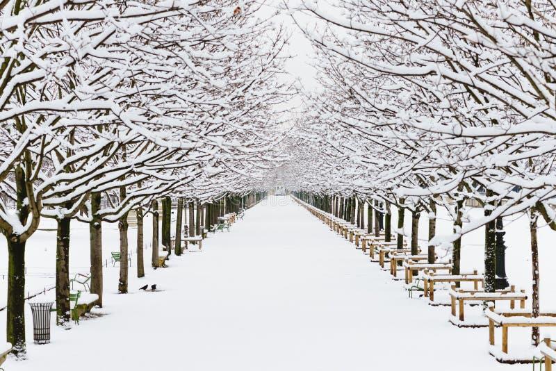 Endloser Weg bedeckt mit weißem reinem Schnee in Paris lizenzfreie stockfotos