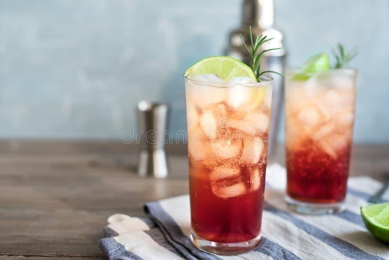 Endrino Gin Fizz Cocktail imagen de archivo libre de regalías