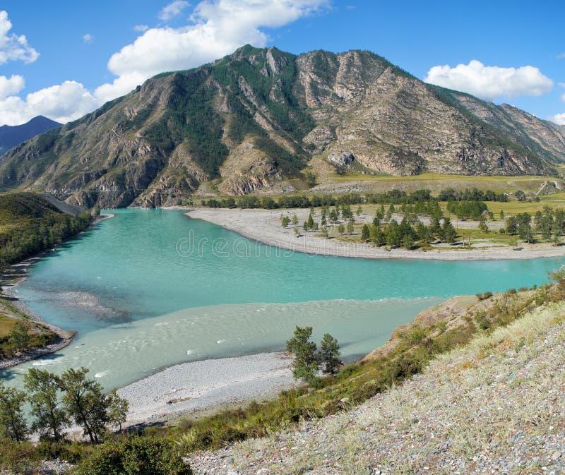 Endroit du confluent des rivières Katun et Chuya dans Altai m images libres de droits