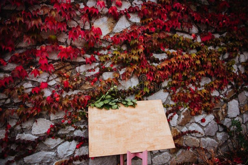 Endroit pour l'inscription sur le mur en pierre avec des feuilles photo stock
