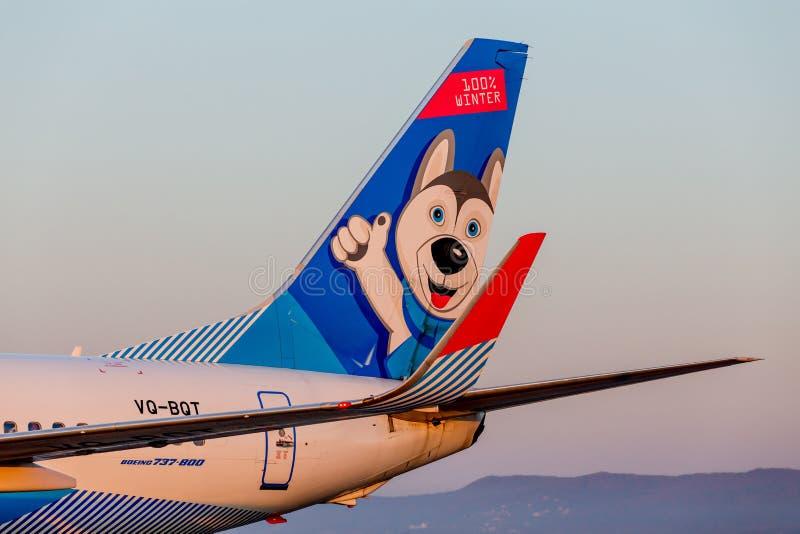 Endstück von Passagierflugzeugflugzeugen Boeing 737-800 von NordStar-Fluglinien auf der Rollbahn Rumpf wird als Hundsibirischer h lizenzfreies stockfoto