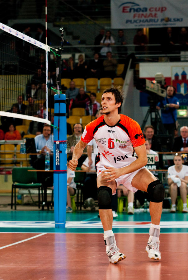 Enea Cup Poland volleyball royalty free stock image