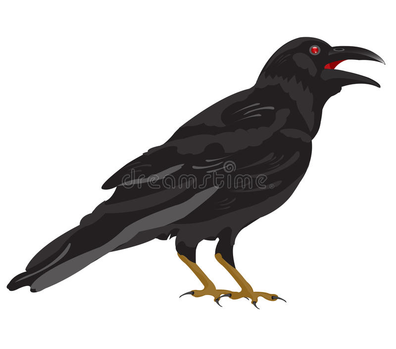 Enegreça o corvo ilustração stock