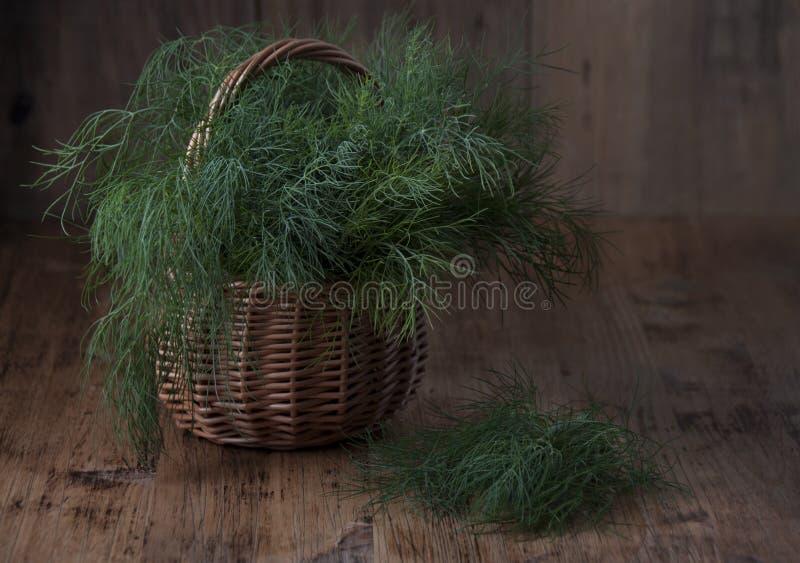 Eneldo fresco en una cesta foto de archivo libre de regalías