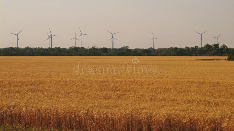 Energía eólica foto de archivo