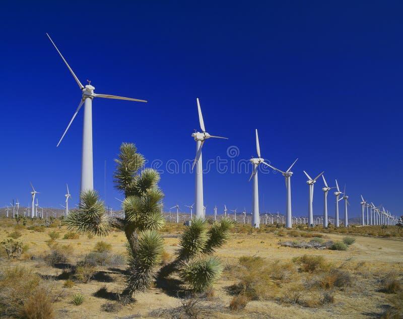Energía eólica, desierto de Moyave imagen de archivo