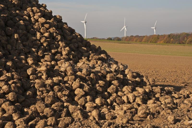 Energía, remolachas y turbinas de viento fotos de archivo