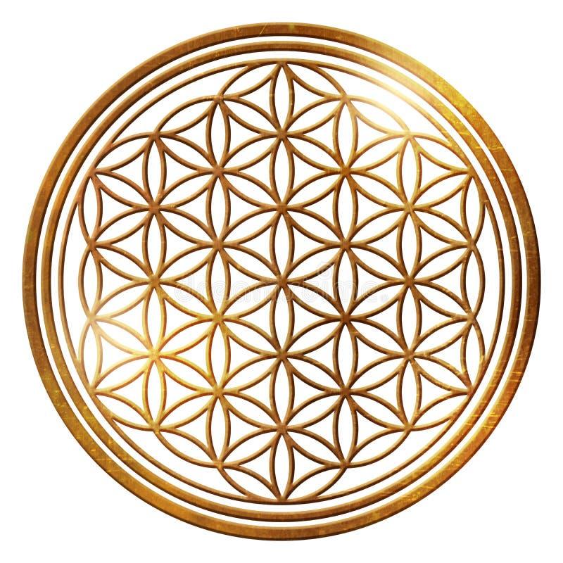 Energi för prydnad för livblomma guld- isolerad fri royaltyfri illustrationer