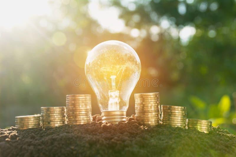 Energi - sparande ljus kula och träd som växer på buntar av mynt royaltyfria foton