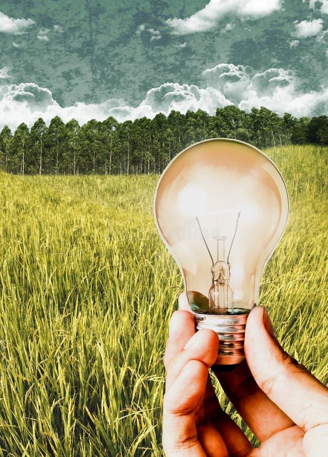 Energia della biomassa, sostenibile immagini stock