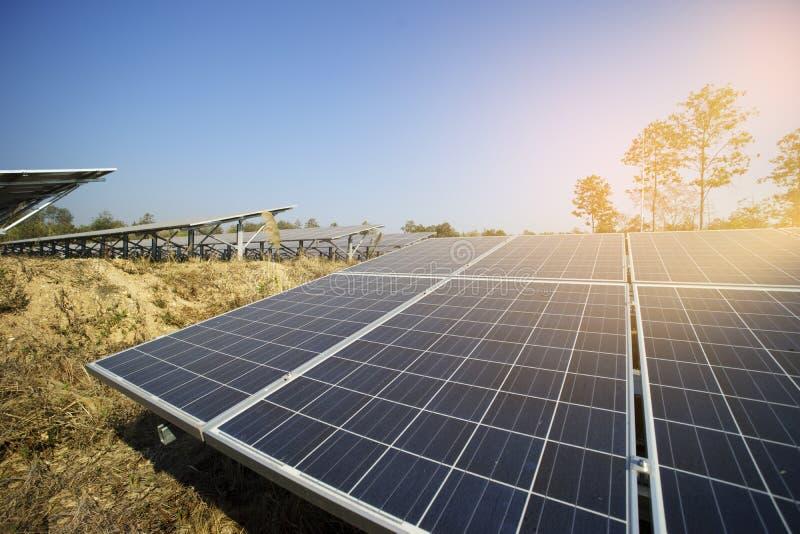 energia solar do verde da exploração agrícola da luz do sol foto de stock royalty free