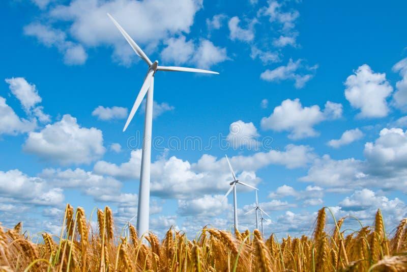 Download Energia verde foto de stock. Imagem de verde, windmill - 16862888