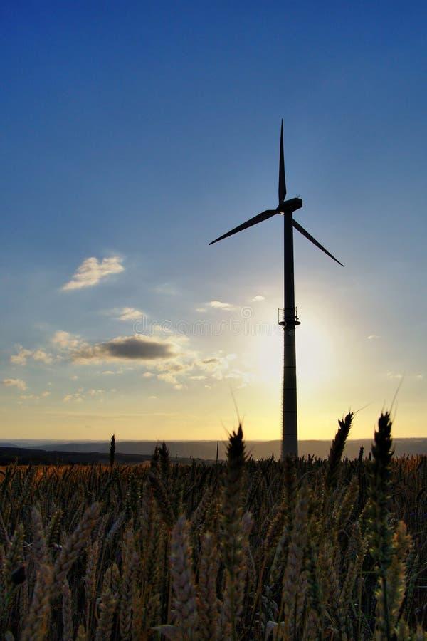 energia wiatr obraz royalty free